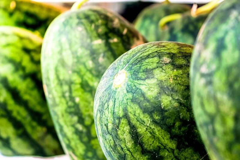 How to choose a ripe and tasty watermelon