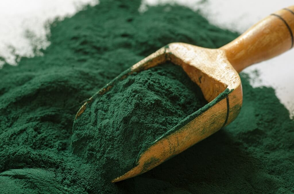 Spirulina algae - a dietary supplement that should be included in your daily diet